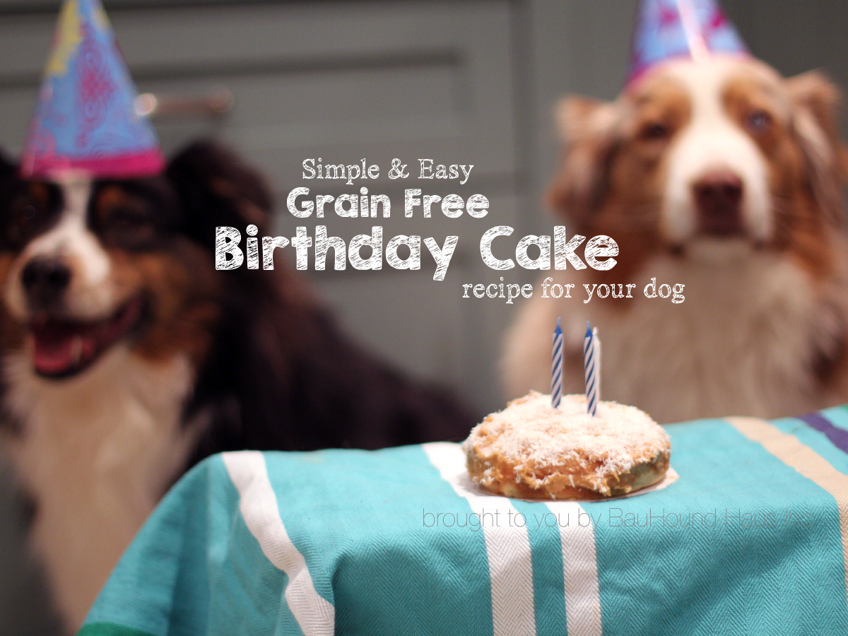 Grain Free Birthday Cake For Dogs