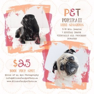 Fundraising for Puppymill Rescue